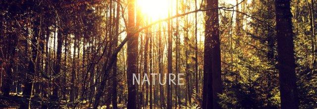 nature 640 EDITED