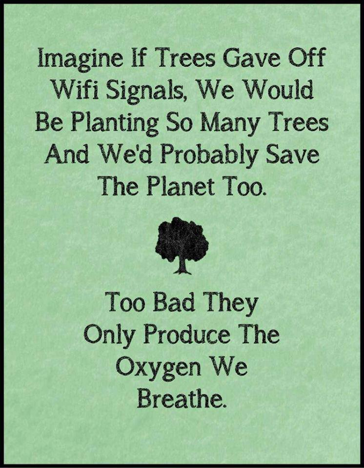 Too Bad Trees Only Produce Oxygen