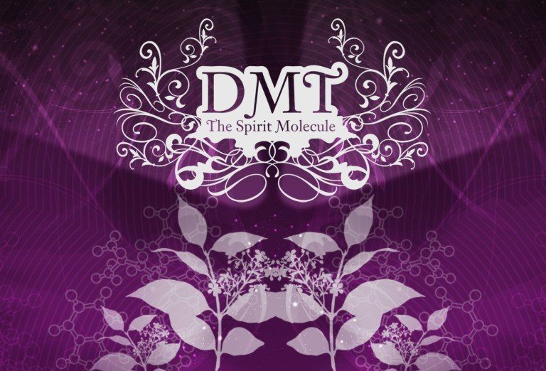 Documentary: DMT – The Spirit Molecule