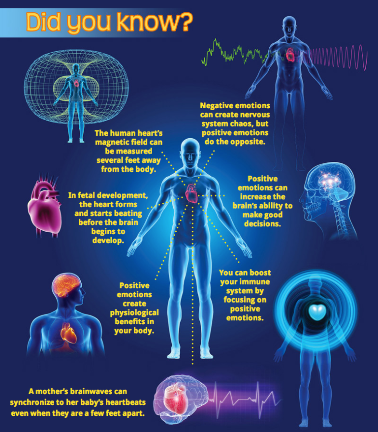 The Amazing Properties of the Human Heart