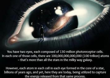 universe experiencing itself
