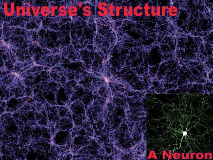 universe structure and neuron