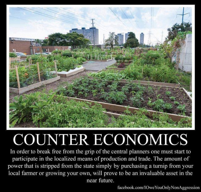 counter economics