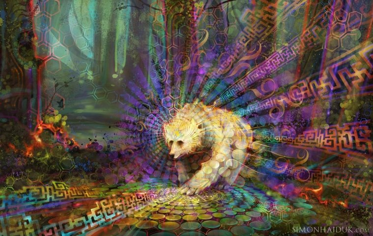Altered States of Consciousness – An Upgrade to Higher Awareness
