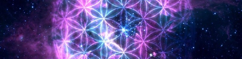 Attention, Intention & the Universe as a Conscious Holographic Information Processor Cropped-001a-the-flower-of-life1