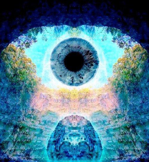 Living Beyond the Five Senses – Crisis is the Starting Gate Tumblr_nf38ugaehx1s5u2cno1_500