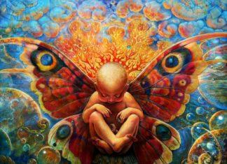 visionary metamorphosis