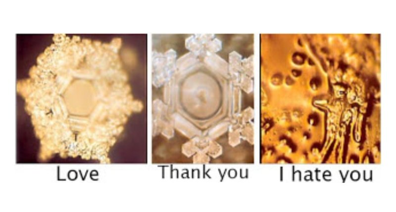 masaru emoto water experiment