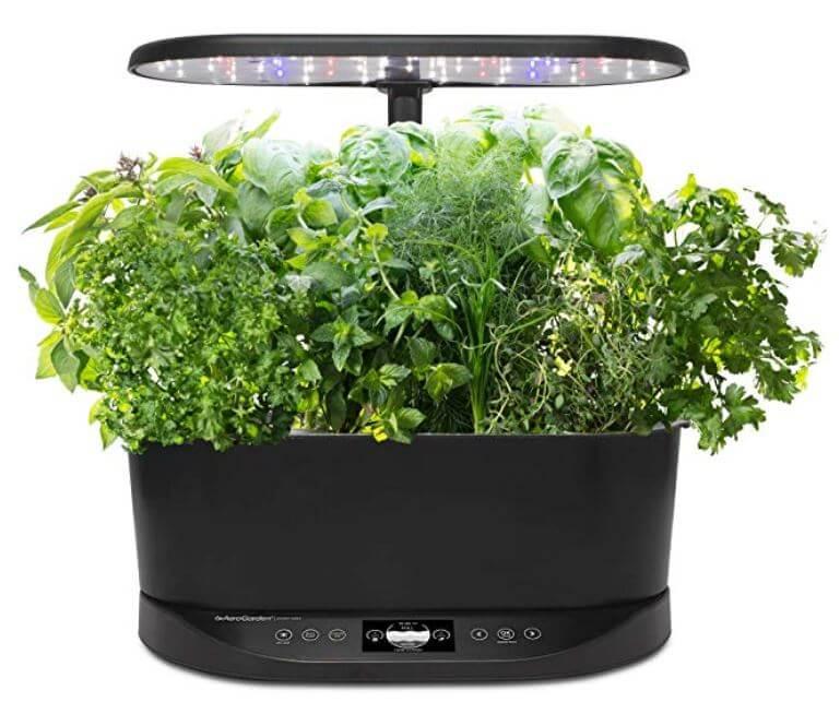 aerogarden hydroponic indoor garden