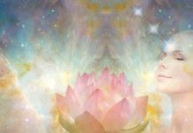 spiritual visionary lotus art