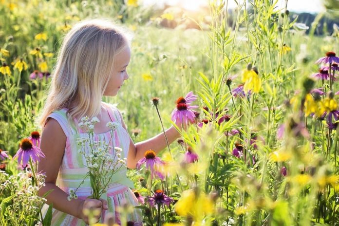 little girl in nature with flowers