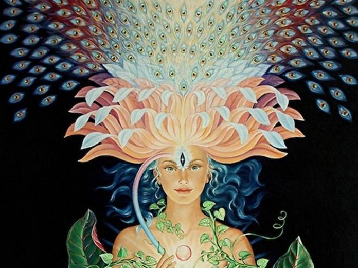 lotus visionary art